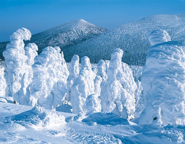 一の坊専用シート!ワイルドモンスター号で行く樹氷鑑賞ツアー