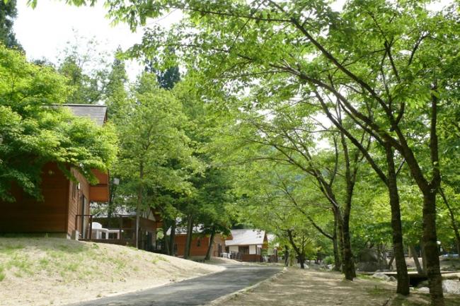 不動尊公園キャンプ場