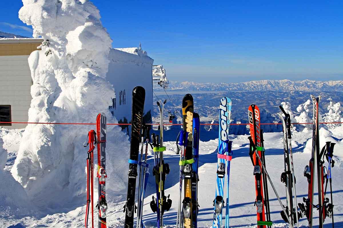 スキー板 スキーケース