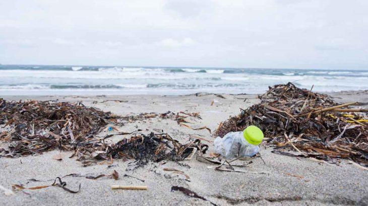 海洋プラスチック ごみ
