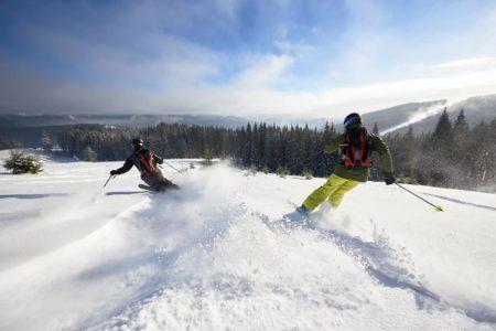 今人気のフリースタイルスキーってなに?板など違いについてシェアします!
