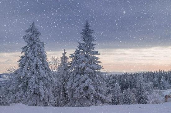 冬キャンプ 暖房器具