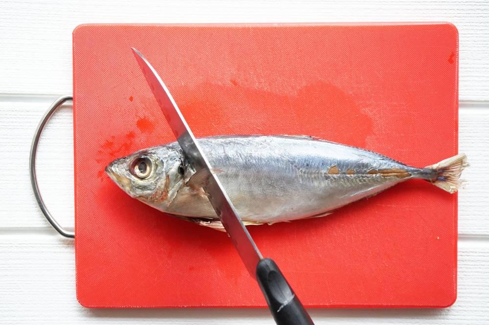 釣り魚 血抜き