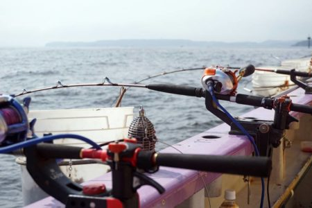 大物釣りの基本スタイル!釣果安定の落とし込みを釣り方や仕掛けまで解説