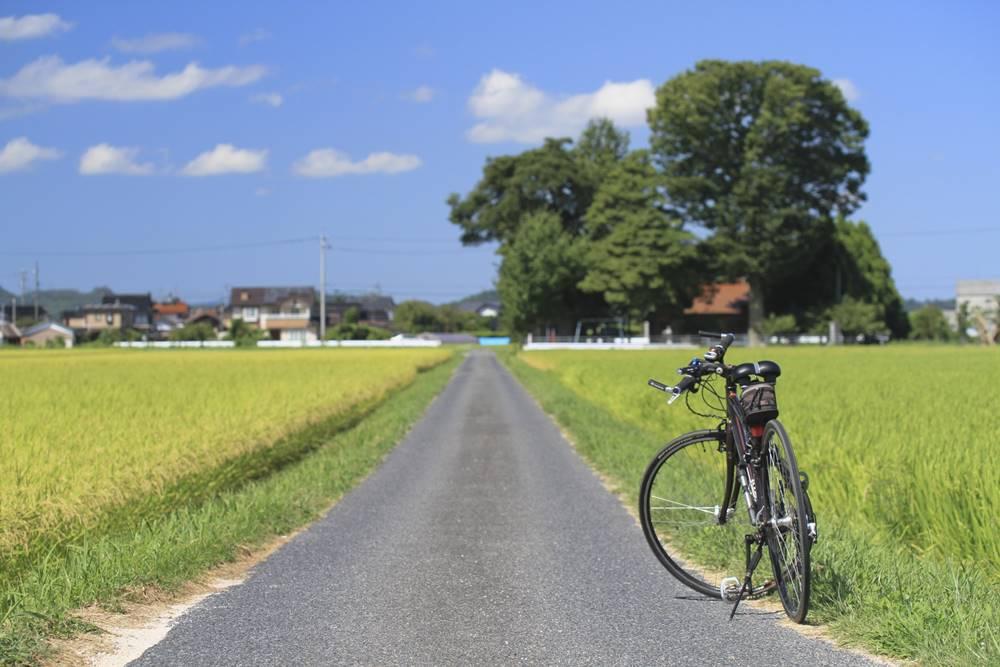ロードバイク 疲労回復