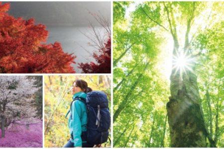 山のスタンプラリーアプリⓇ「ヤマスタ」が東京都とコラボ 多摩の絶景と文化に触れる!「東京多摩ハイク スタンプラリー」をスタート