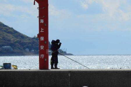 春の訪れを釣りで感じよう!春の堤防釣りで狙うべき魚種とそれぞれの釣り方