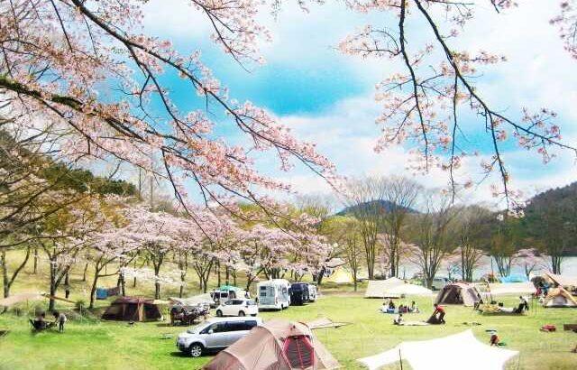 春キャンプ アイテム・グッズ