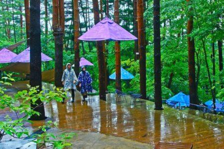 星のや富士「雨グランピング」開催【梅雨の雨天で森を楽しむ新スタイル企画】
