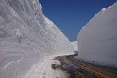 立山黒部アルペンルート、 2020年の「雪の大谷」の高さは15mを記録