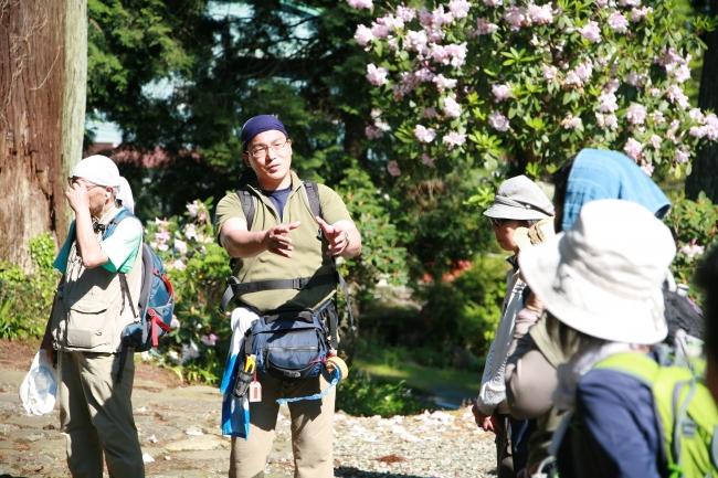 14 Guest House Mt.Fuji(フォーティーン・ゲストハウス・マウントフジ)