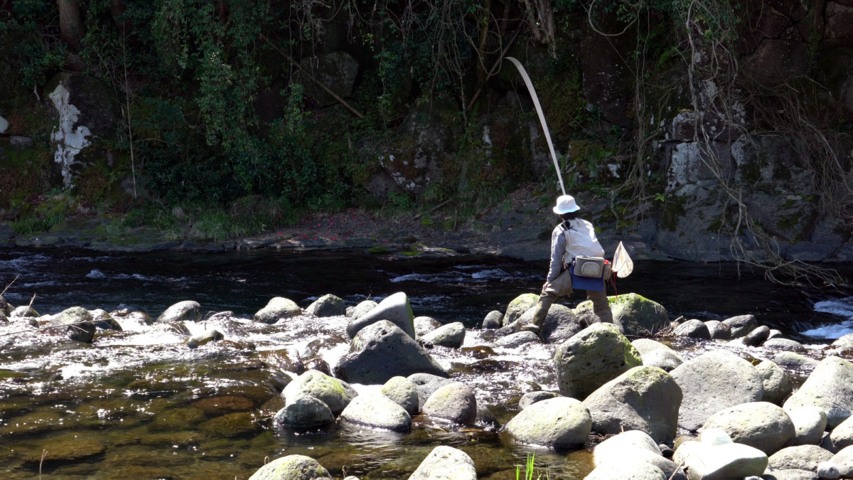 雨上がりの渓流も釣れるとは限らない?雨上がりの渓流の水を読む知識