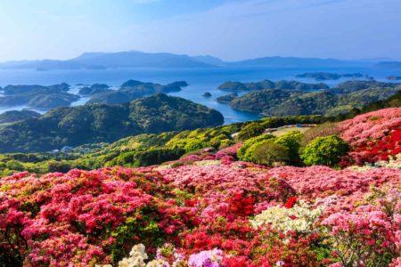 登山をしながらお花見も楽しめる山へ行こう!おすすめの山をご紹介します