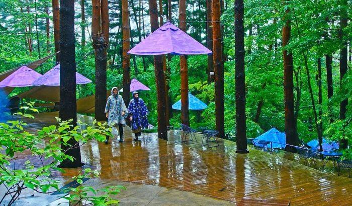 星のや富士、雨グランピング 開催「梅雨の森を楽しむ新しいスタイル」
