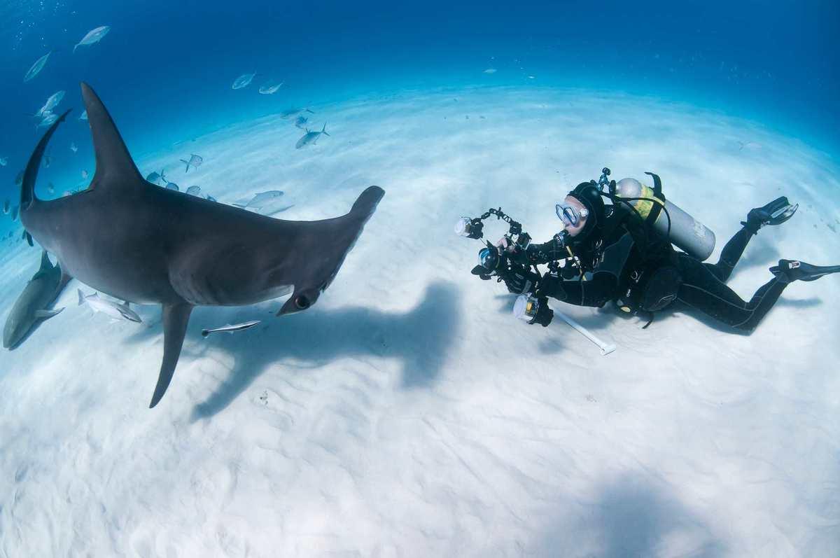 ダイビング 水中の動画撮影
