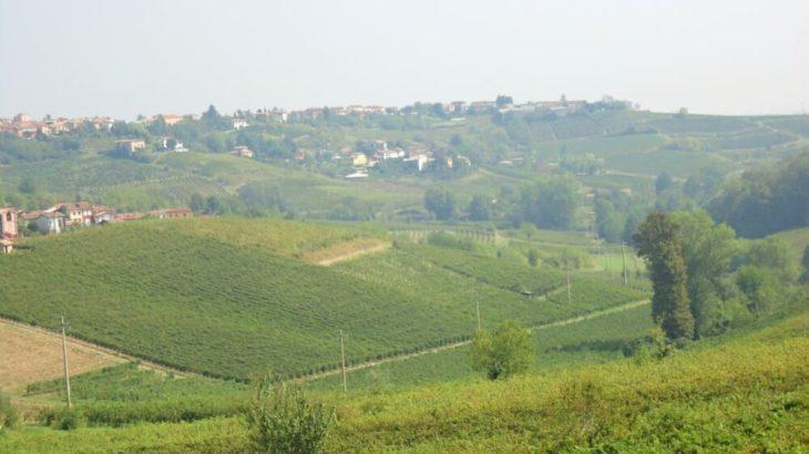 イタリアワイン街道 サイクリング