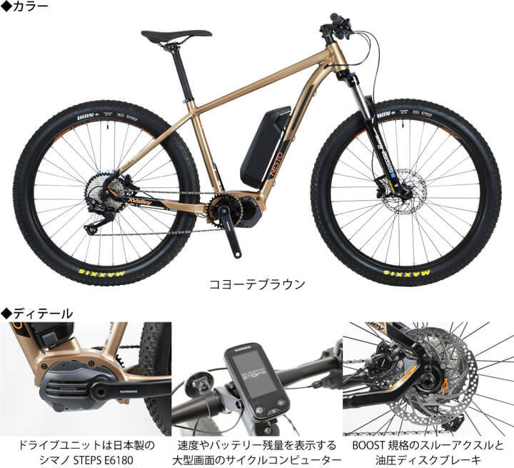 e-bike X-VALLEY E6180