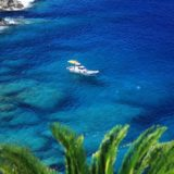 GoToトラベルでダイビングツアーに行こう!花と鍾乳洞の沖永良部島