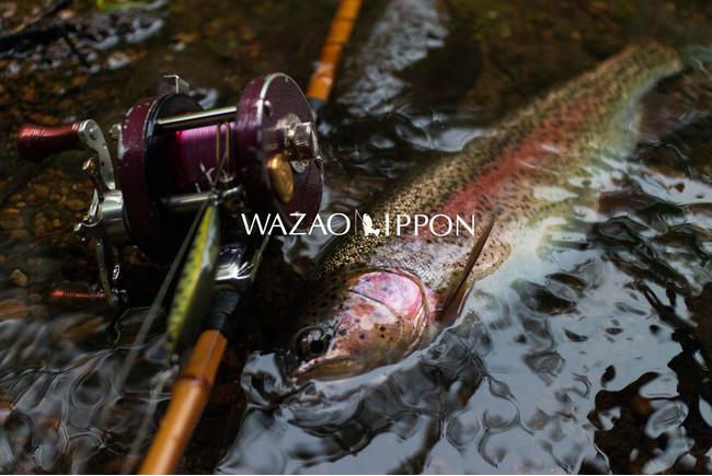 WAZAO-IPPON