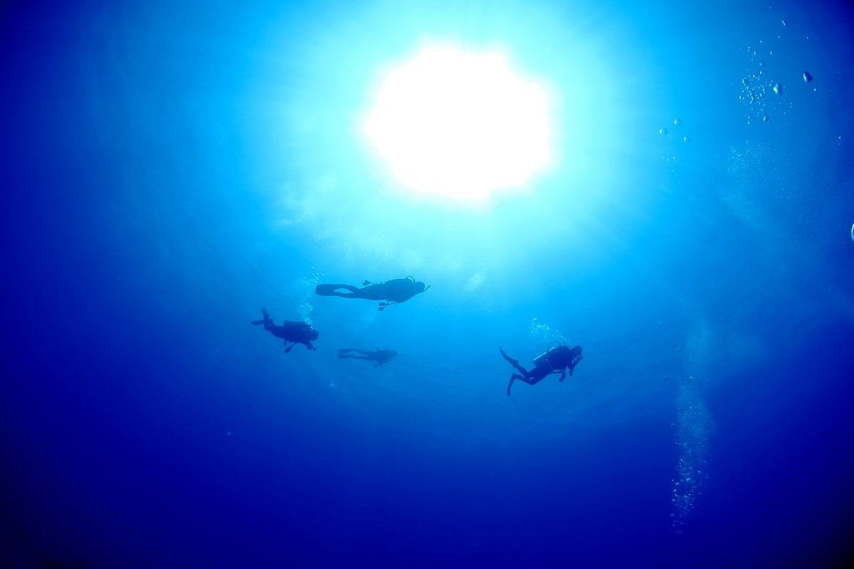 ダイビング ブランク