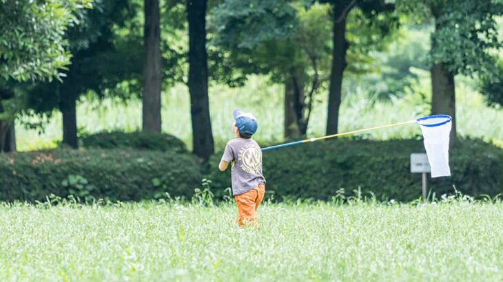春キャンプで子どもと虫とりを楽しもう!虫とりのコツやおすすめキャンプ場を紹介