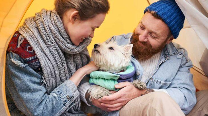 犬連れ冬キャンプを楽しみたい!場所選びと防寒対策のポイント