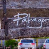 パタゴニアのフリースがおしゃれで万能!おすすめの理由や人気モデルの特徴も紹介