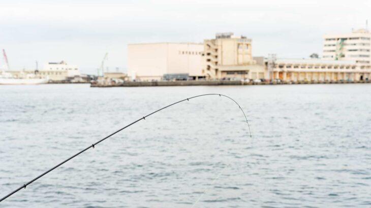 海釣り 春