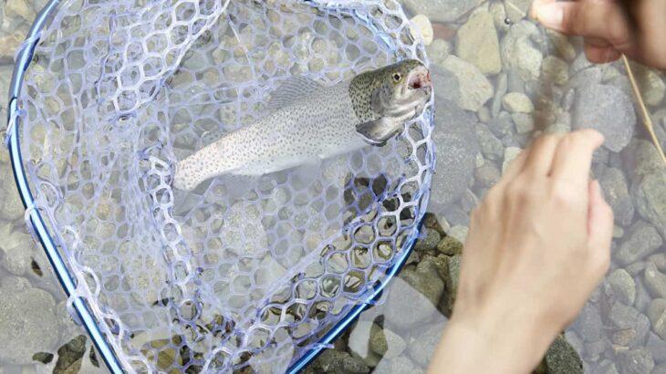 ソロキャンプで源流でマス釣りにチャレンジ!ソロキャンプで釣りを楽しむ方法
