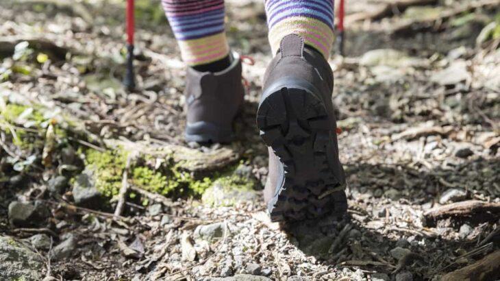 山の環境問題について考える。山の環境がもたらす影響とは?登山マナーを守るべき理由