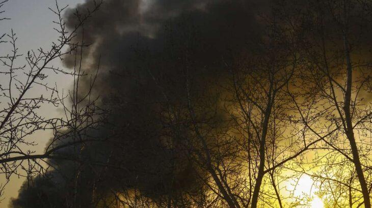 オーストラリアの森林火災はなぜ起きた?オーストラリアが向き合う環境問題とは