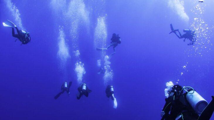 ドリフトダイビングの潜り方とポイント!必要なスキルとアイテムは?