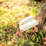 秋キャンプは本を読んで楽しもう!読書におすすめの本をジャンル別に紹介!